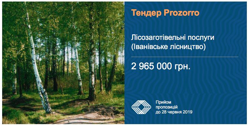 тендер лісозаготівельні послуги
