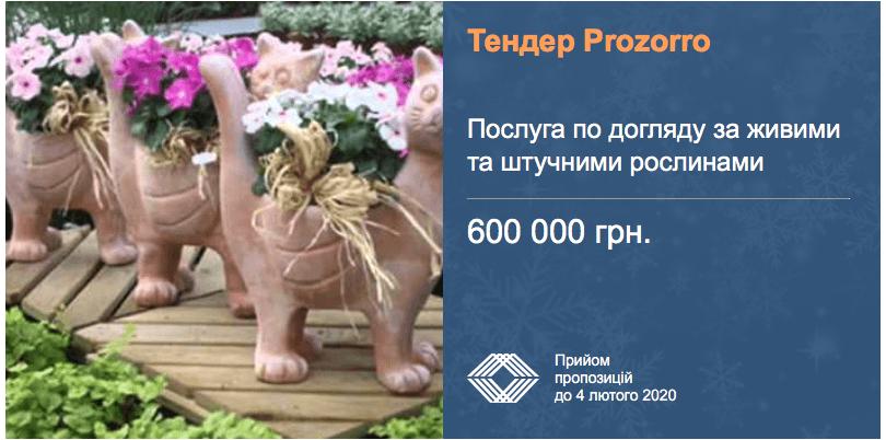 """Міжнародний аеропорт """"Бориспіль"""" оголосив тендер догляду за рослинами"""